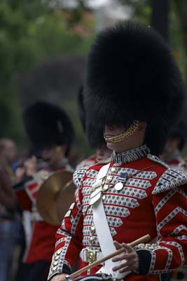 Royal Horse Guards #19