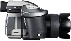 Hasselblad H2D