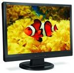 NEC 24 Inch Monitor