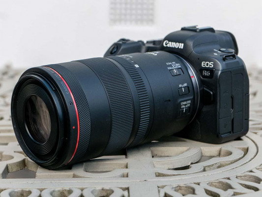 Canon RF 100mm F2.8L Macro IS USM Review